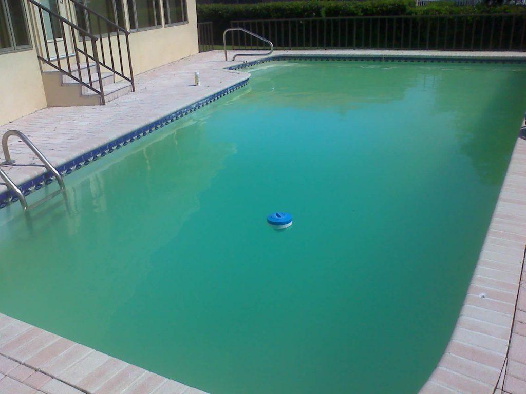 Difícil manter sua piscina limpa