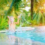 3 dicas para limpar a piscina no outono