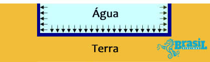 Forças na piscna com água
